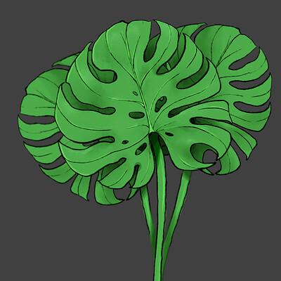 Taha yeasin leaf study