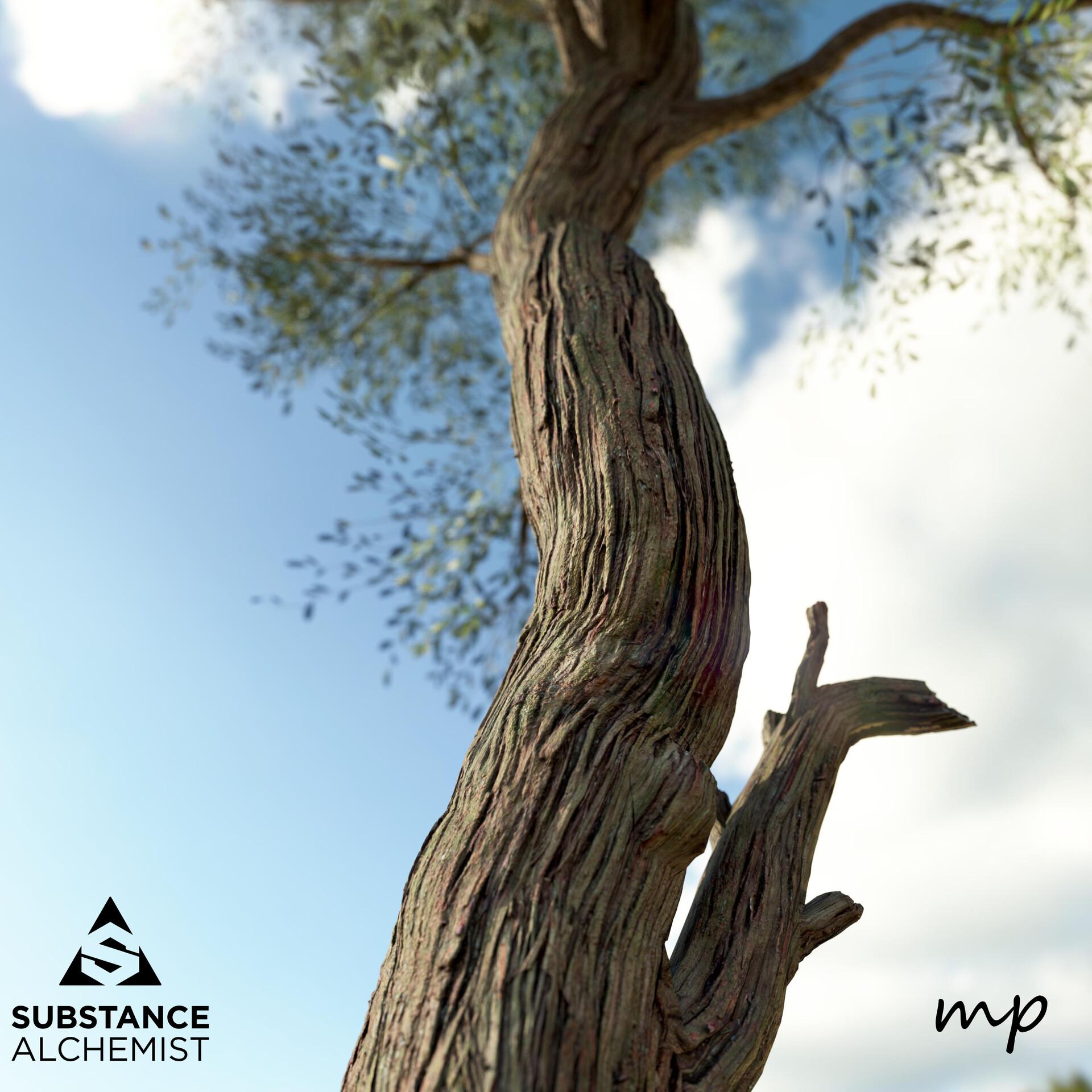 Martin pietras tree render 2 0