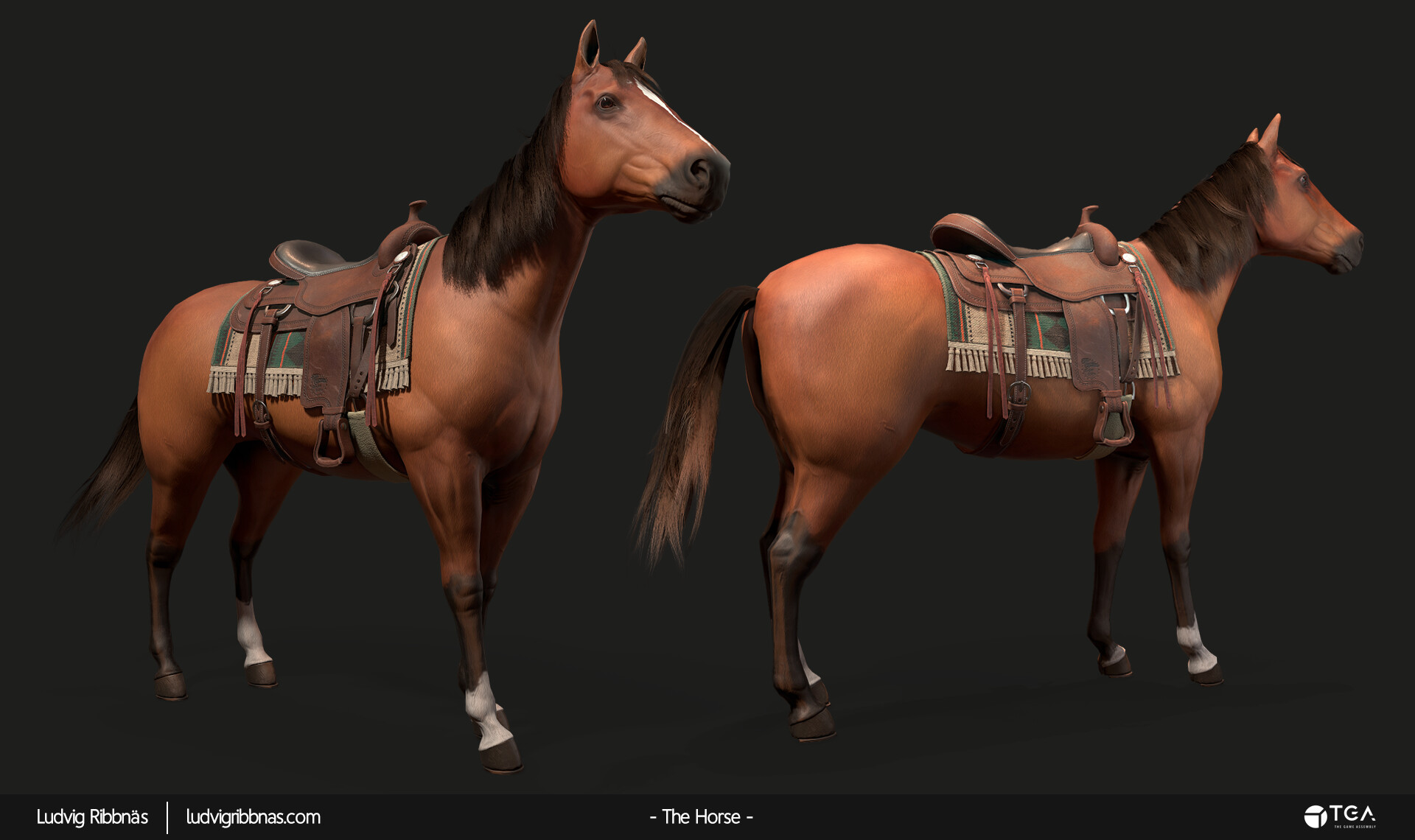 Ludvig ribbnas thehorse twohorses