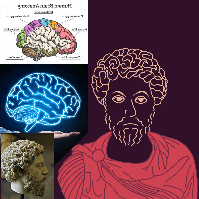 Marcus Aurelius - Ref