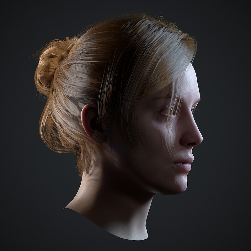 Realtime Hair and Face Study