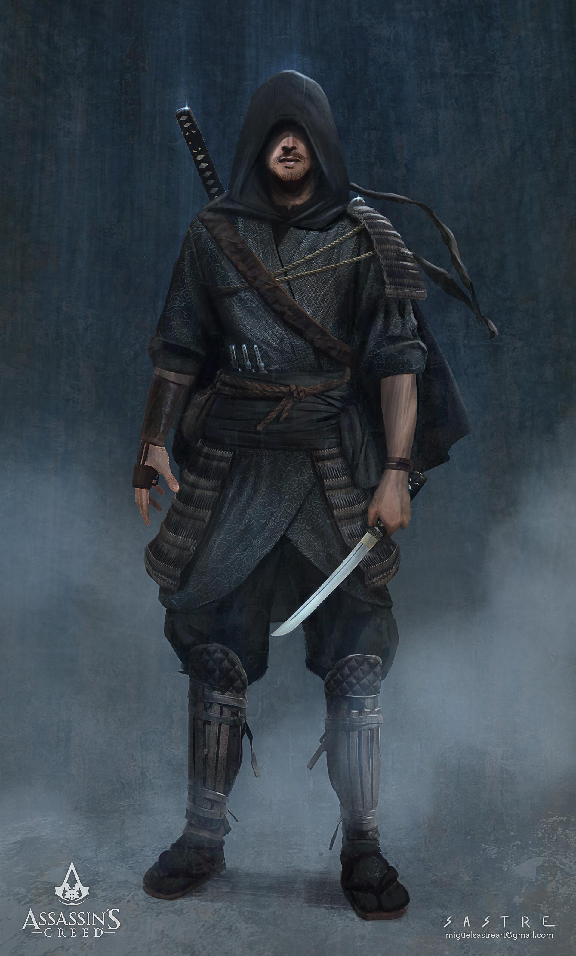 Miguel sastre assassins ninja1