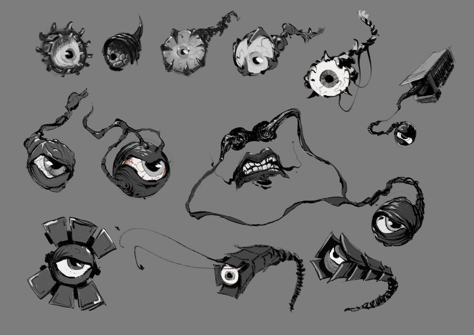 MMG eyeball cameras