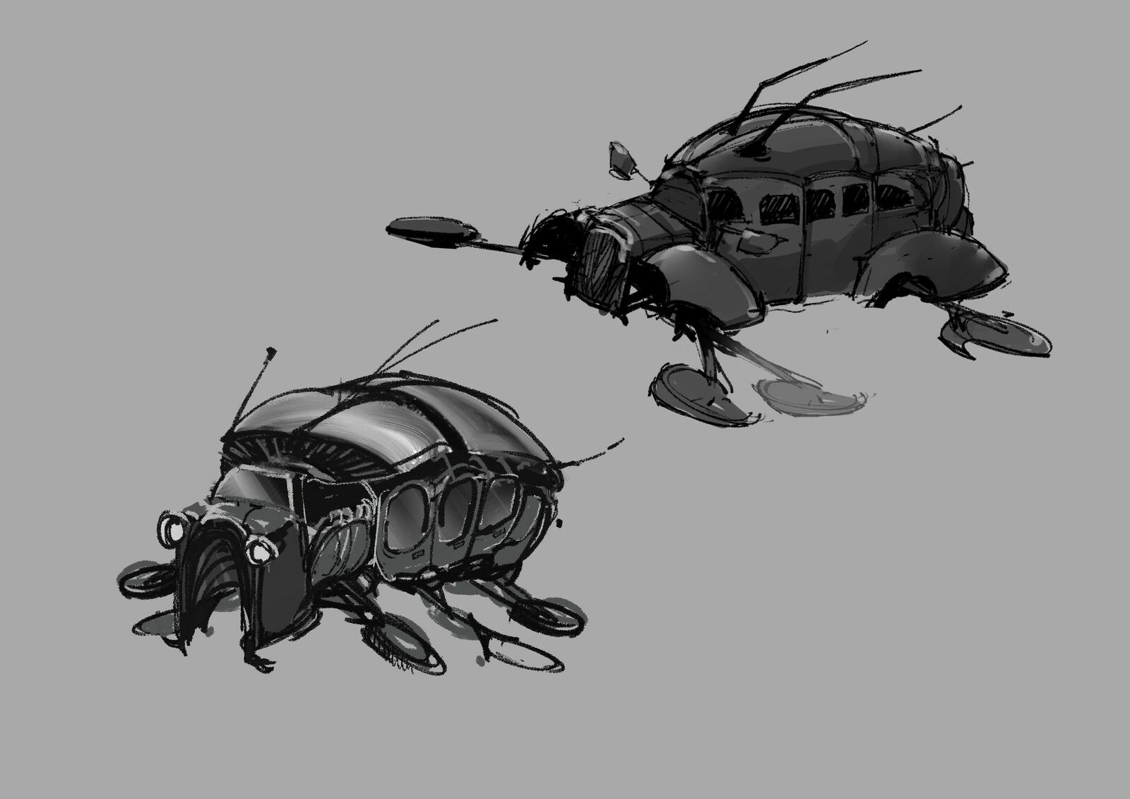MMG insect cars