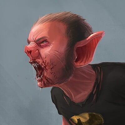 Niklas rhose bat man