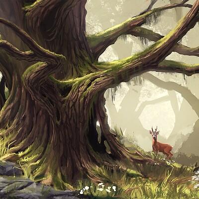 Niklas rhose forest
