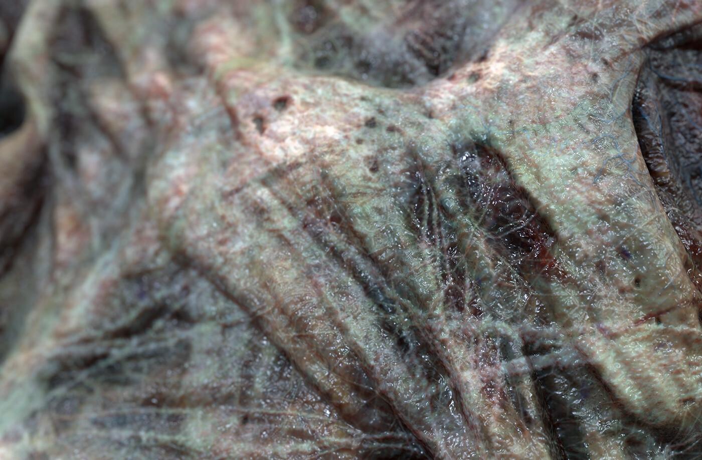 Zombie Skin micro detail closeup 1