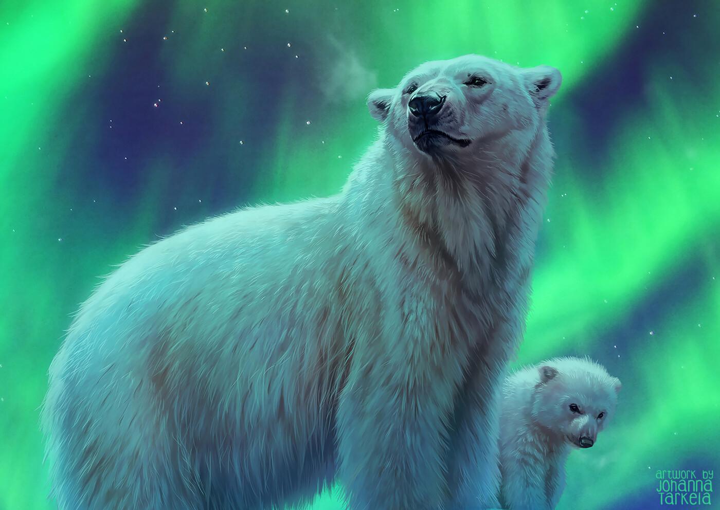 Картинка белый медведь и северное сияние