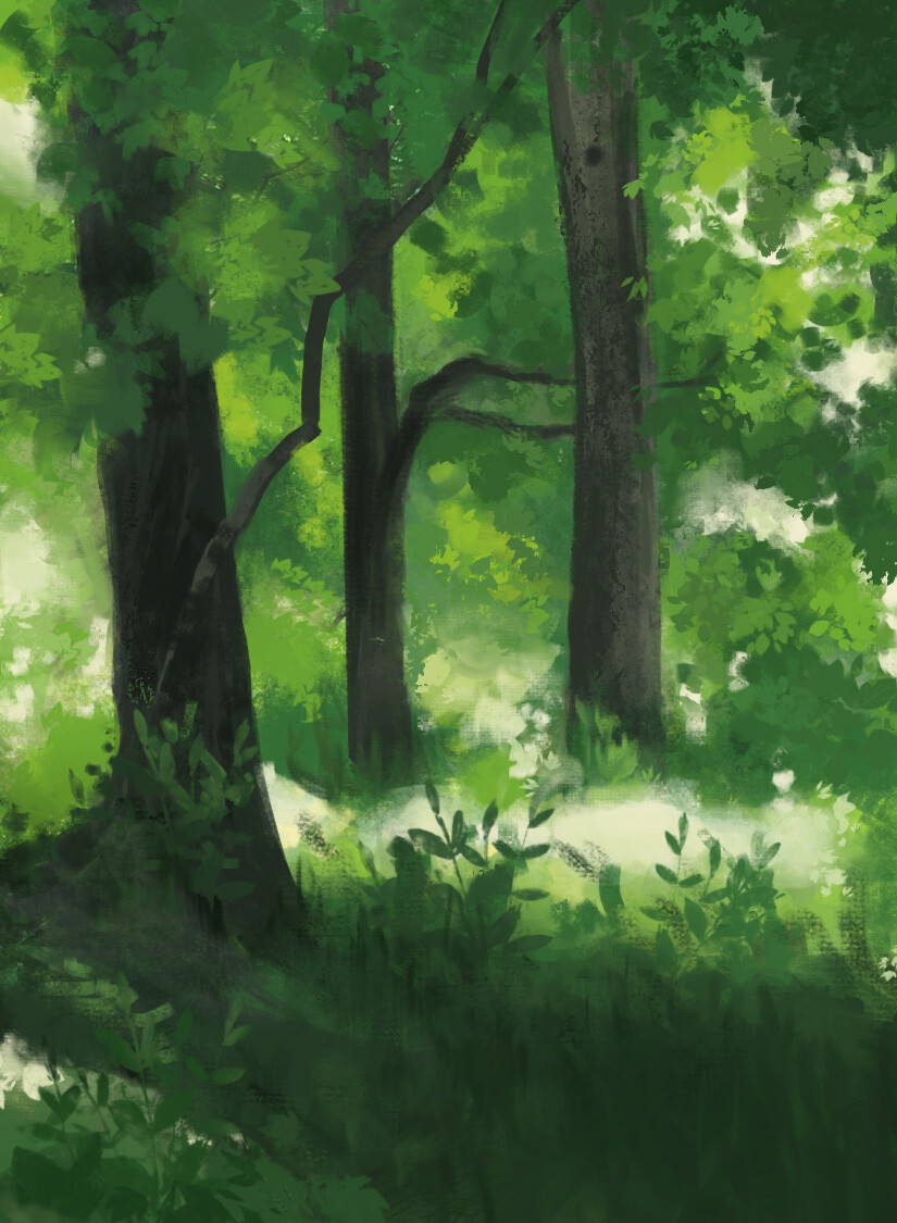 Kate miterko forest sketch 2019 03 12 00 10 41 utc