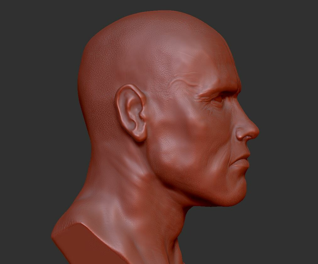 Quick Arnold/Terminator zbrush sketch/practice... trying to learn to capture likeness.