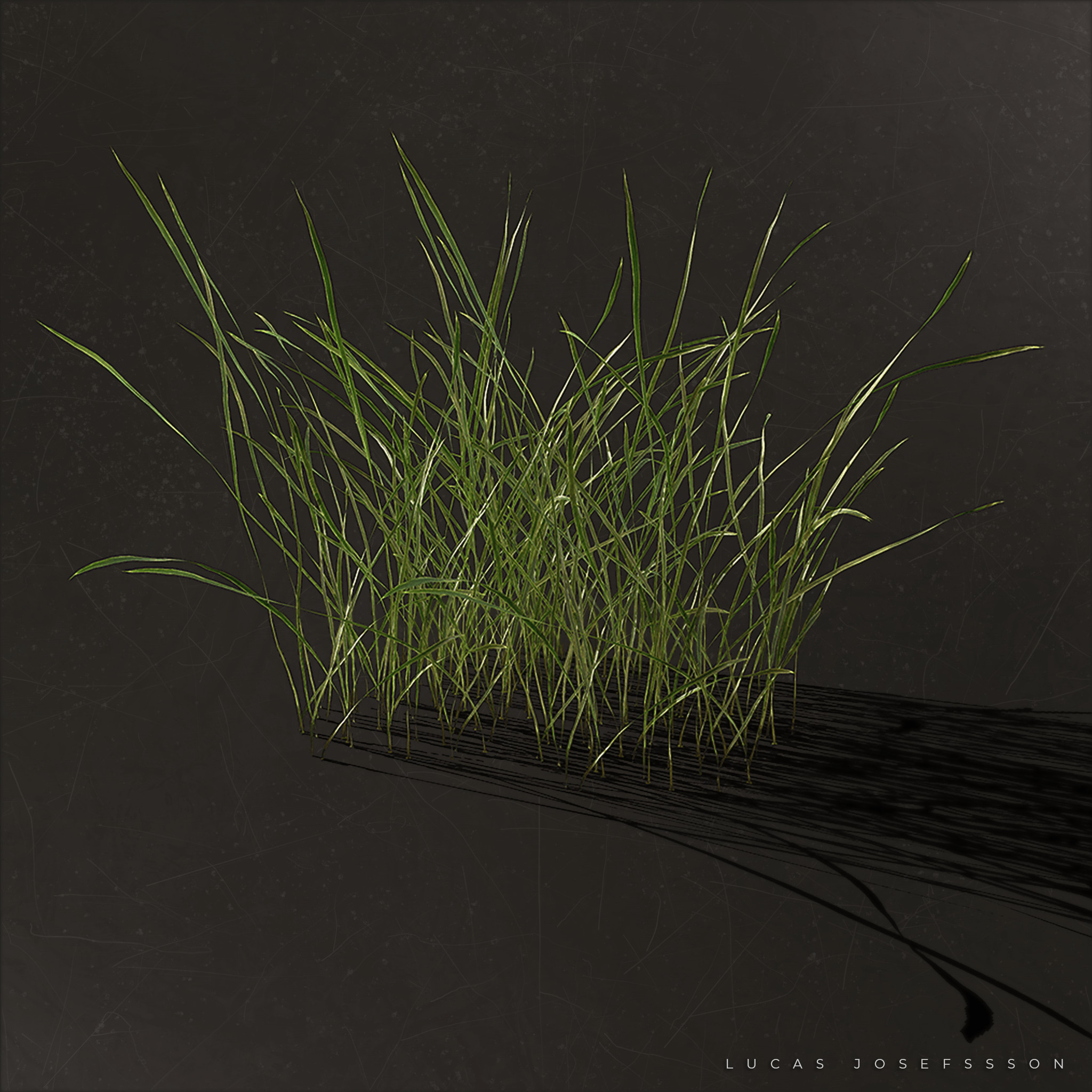 Marmoset grass render