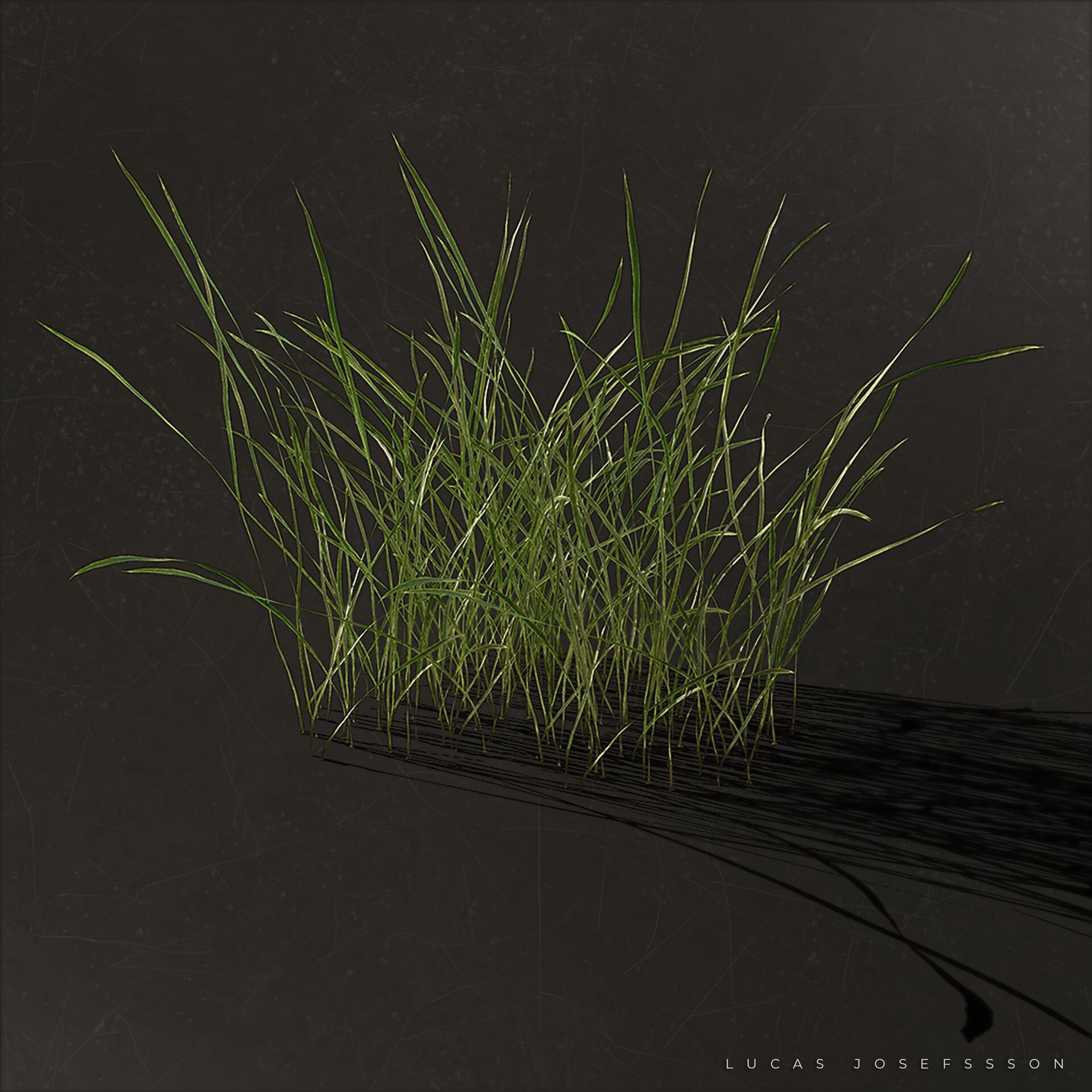 Marmoset grass render