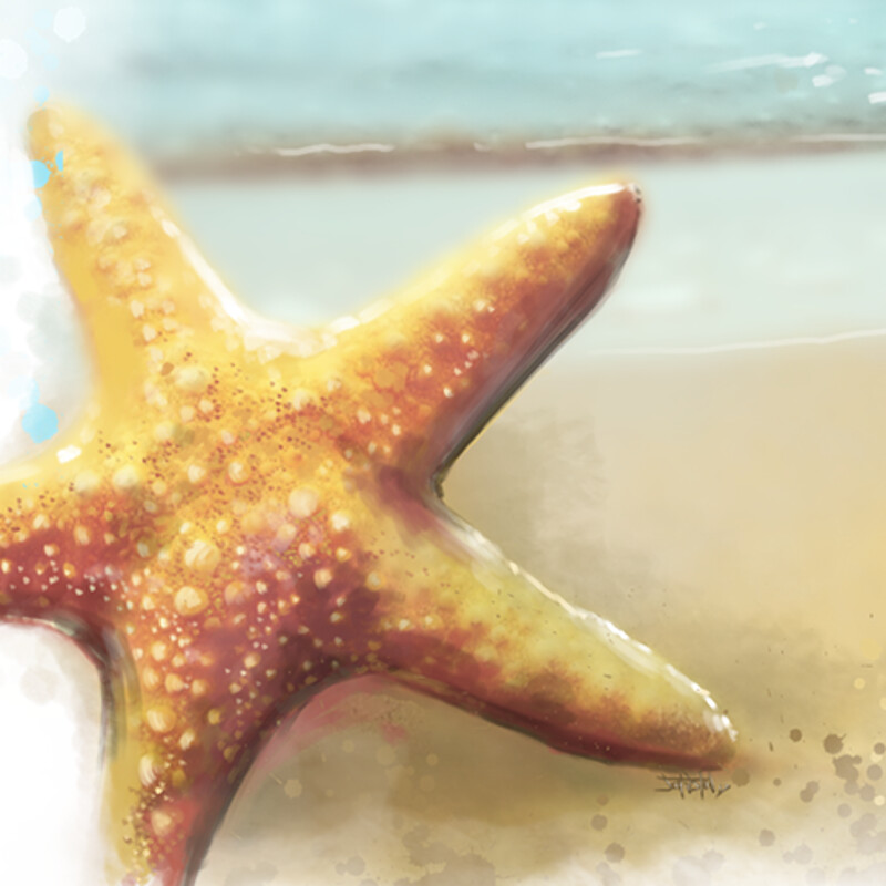 Starfish spot digital painting