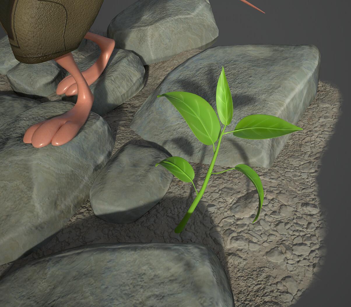 Paul lembcke plant closeup