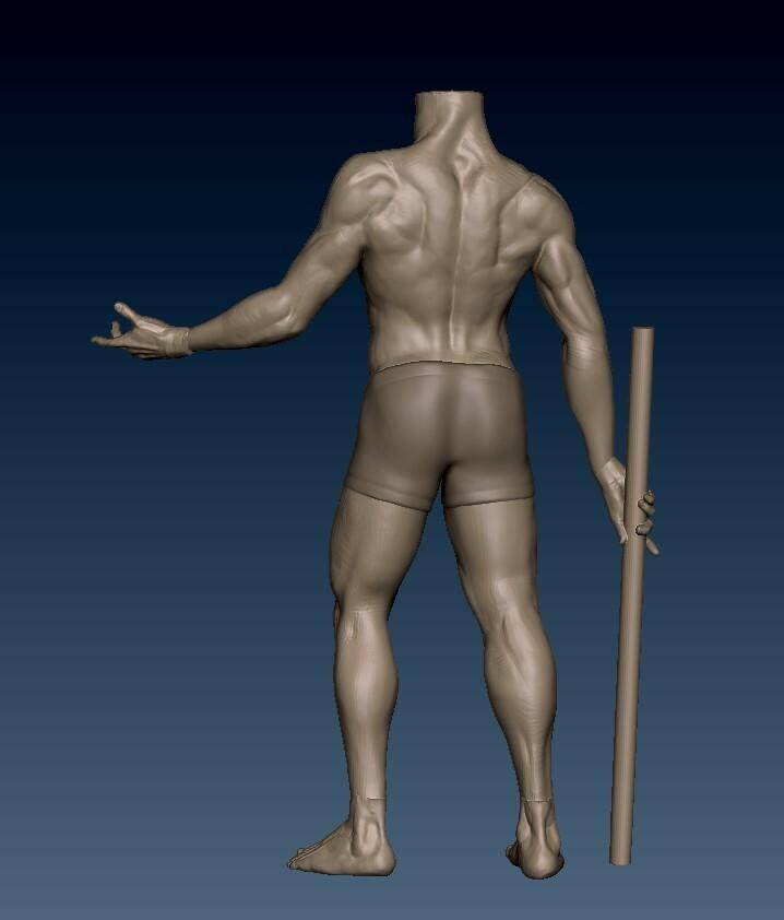 Male Anatomy WIP