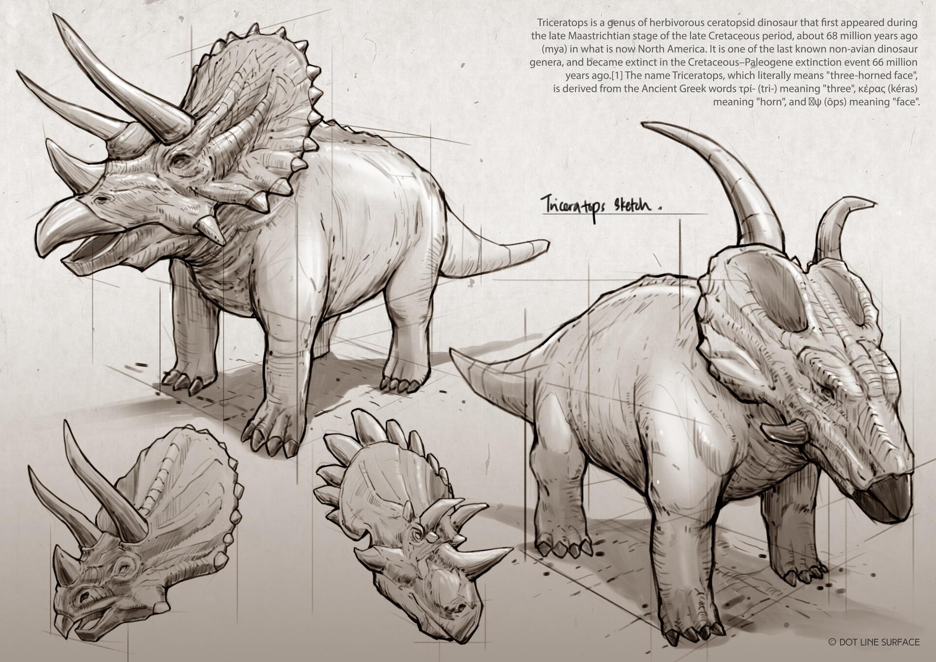 Dot line surface art studio triceratops mockup