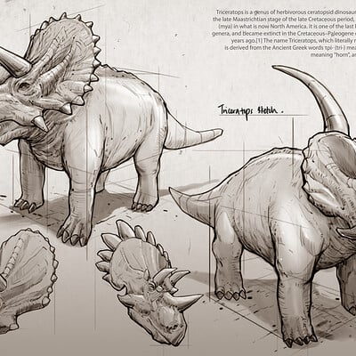 Dot line surface art studio triceratops mockup