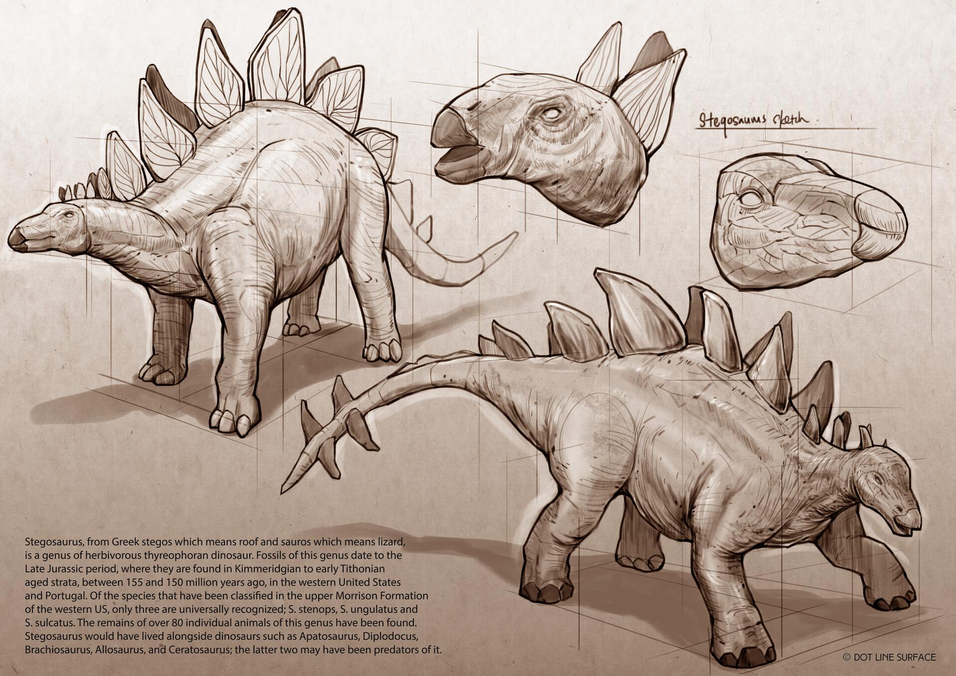 Dot line surface art studio stegosaurus