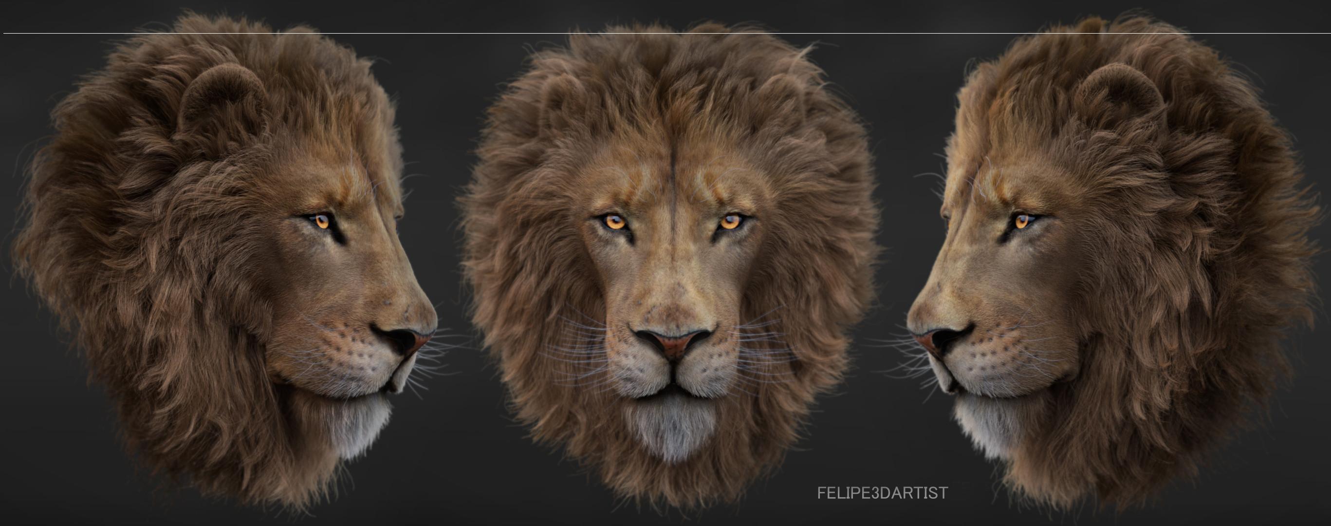 LION - XGEN - GROOM TD - FELIPE3DARTIST