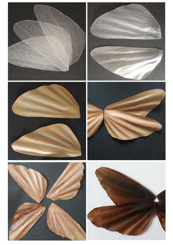 wing process