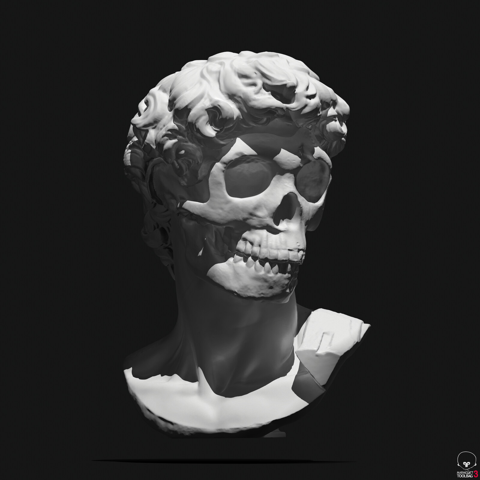 David's michelangelo bust revisited by myself