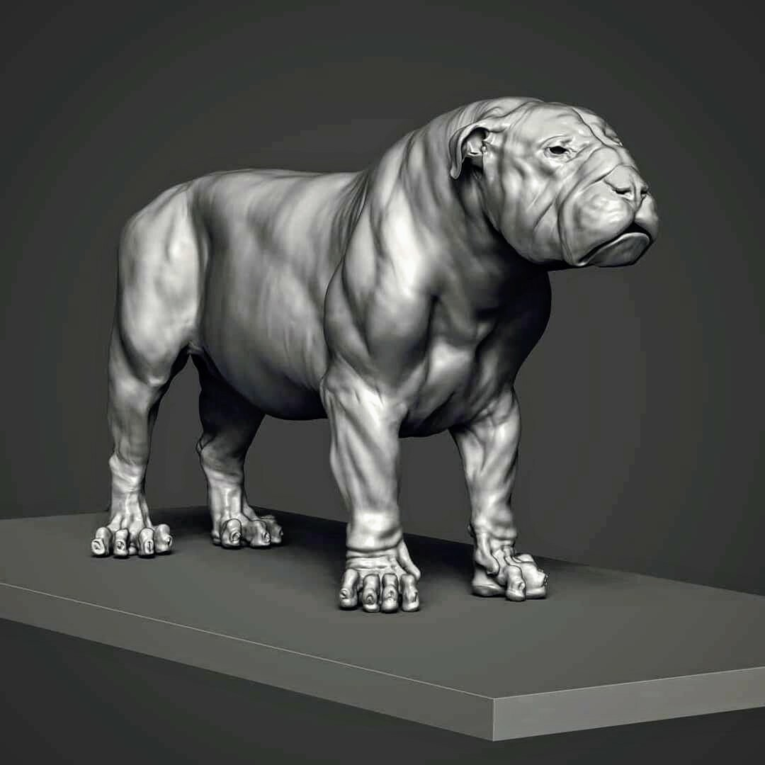 What's amazing about a universal topo workflow, is that you can do an English Bull Lion pretty easily...