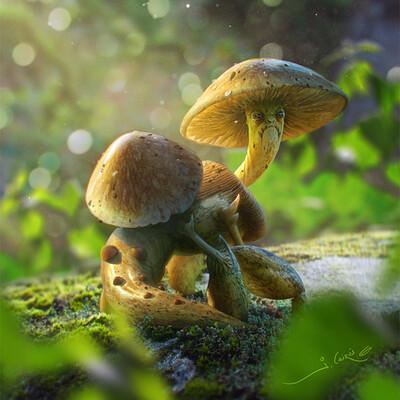 Joshua cairos mushroom creature normal