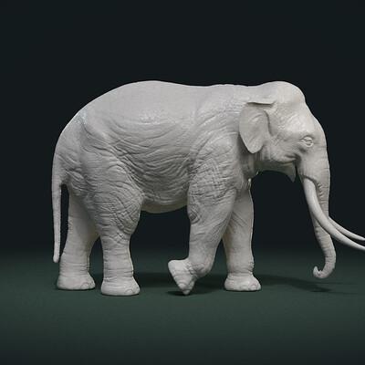 Alexander volynov elephant pose cx 0001