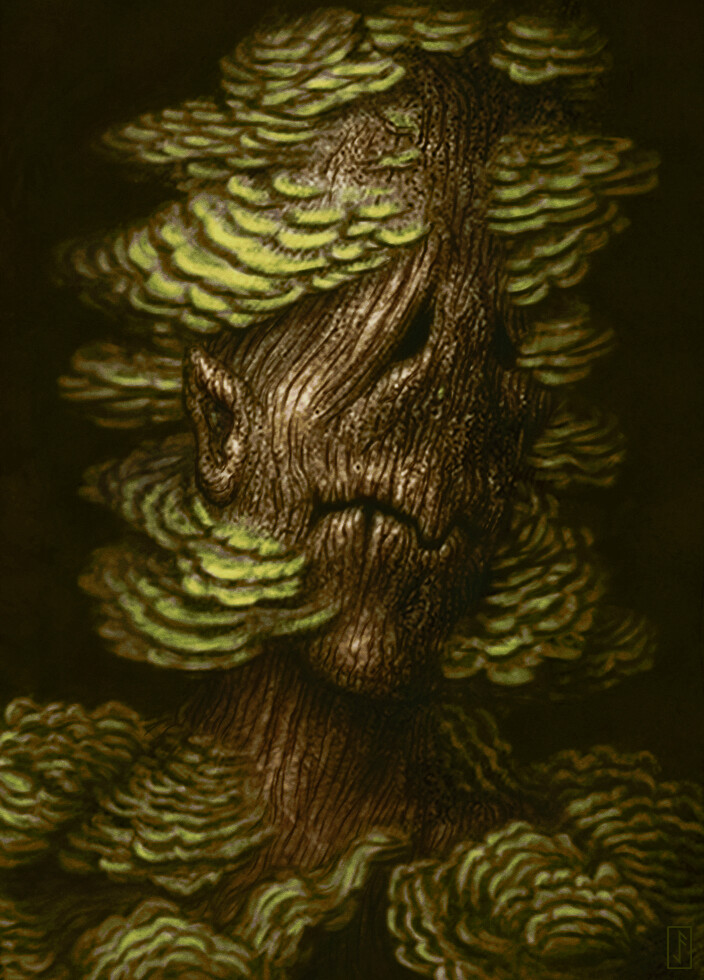 Jason farmer 14 treeman