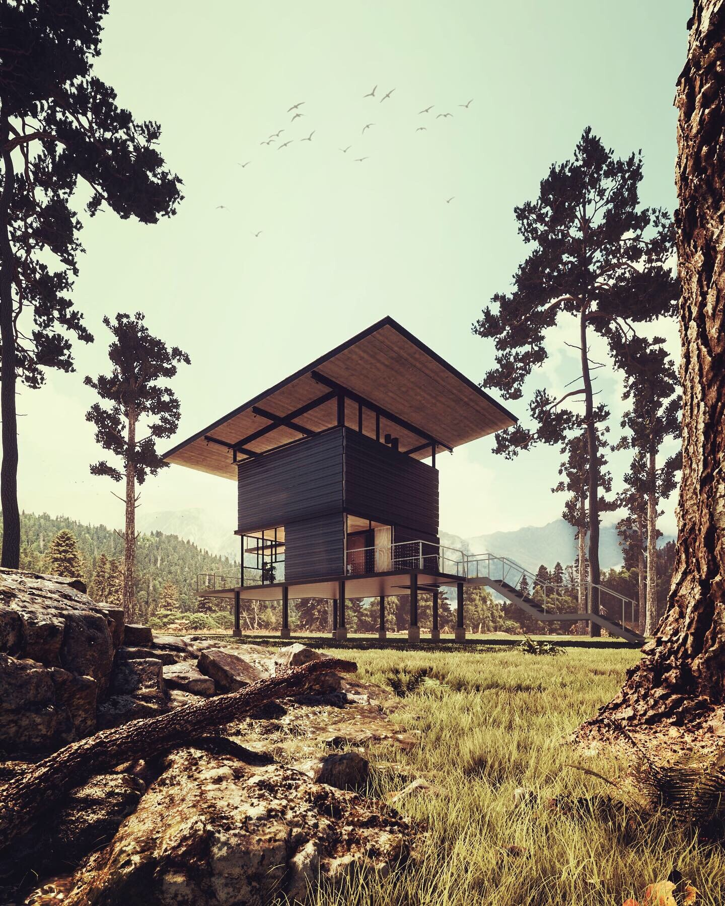ArtStation - My final visualization, modern house in forest