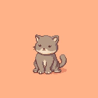 Carolyn jong cat animation