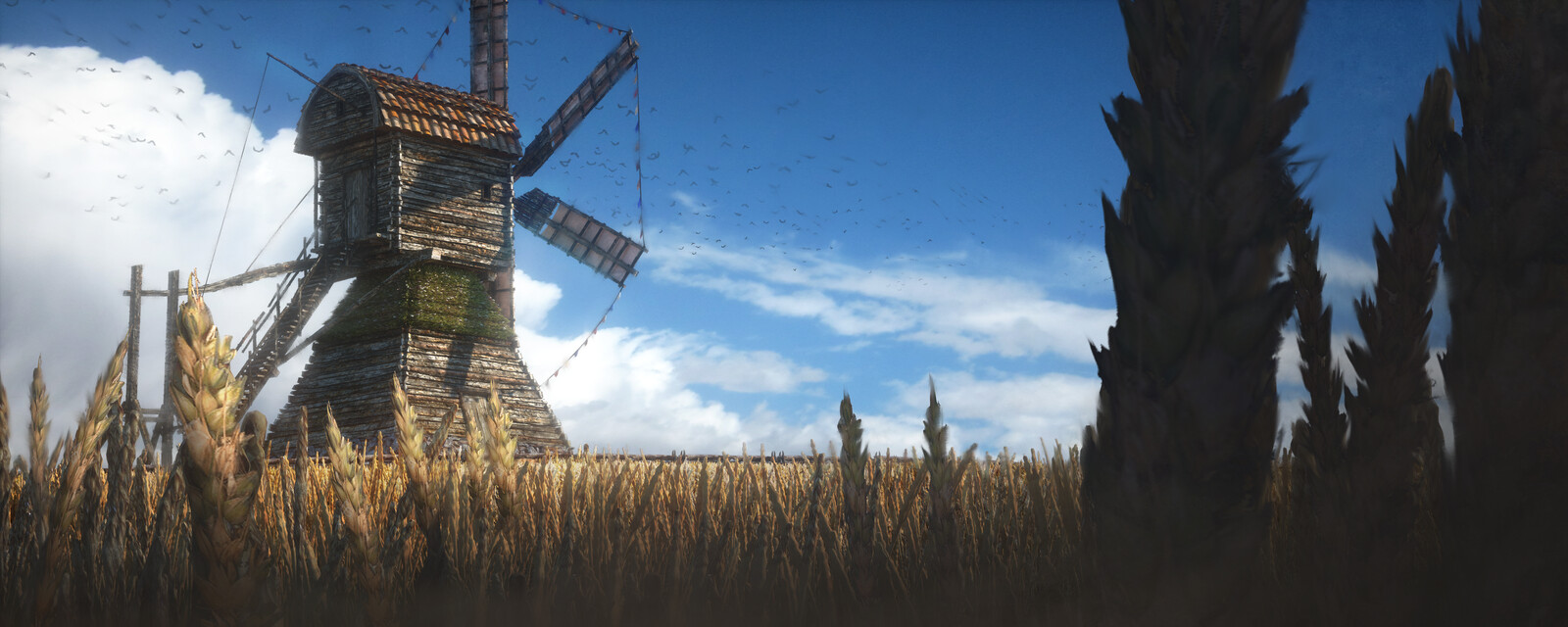 Windmill in Summer Sun