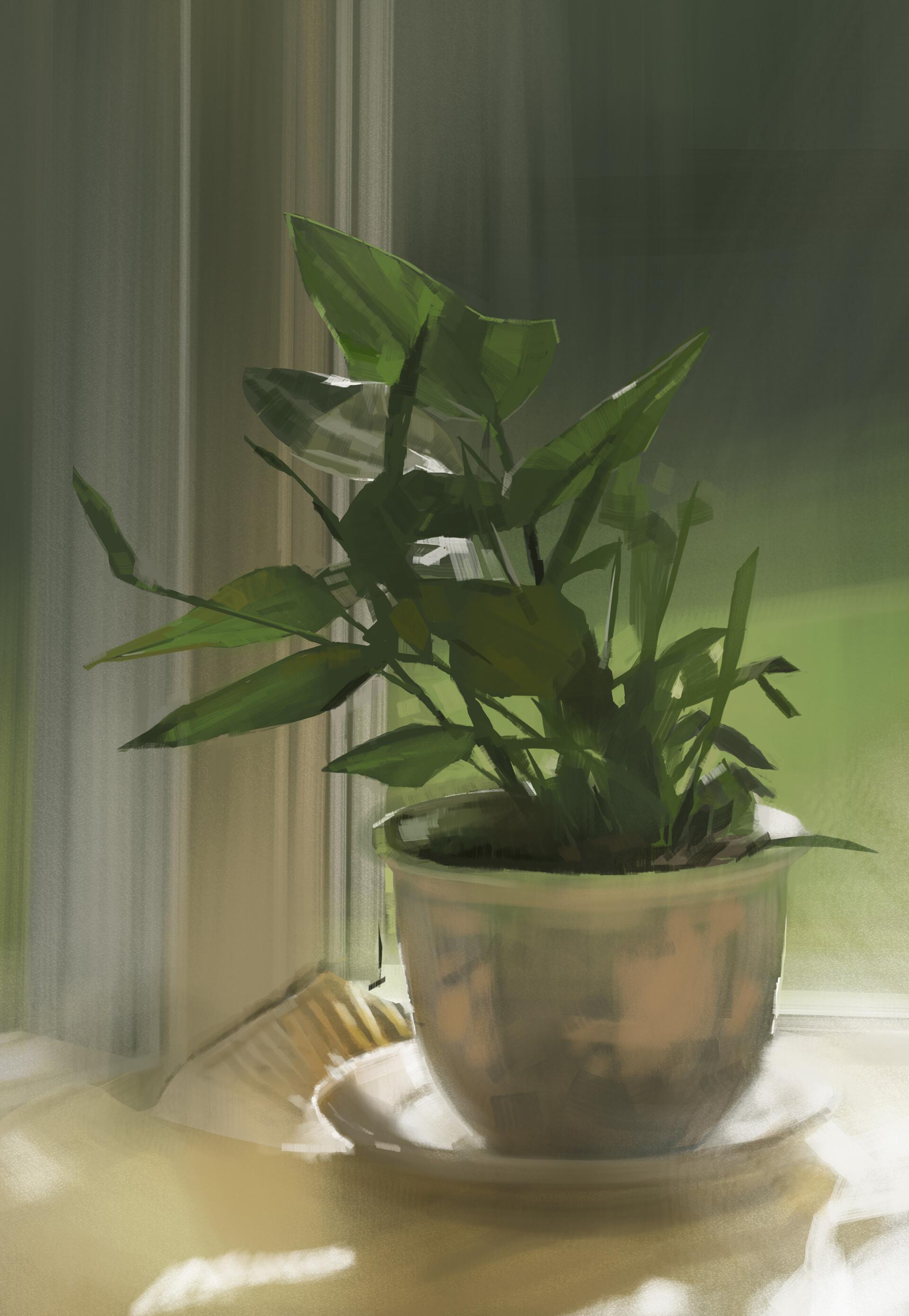 Chris ortega cortega plant fin