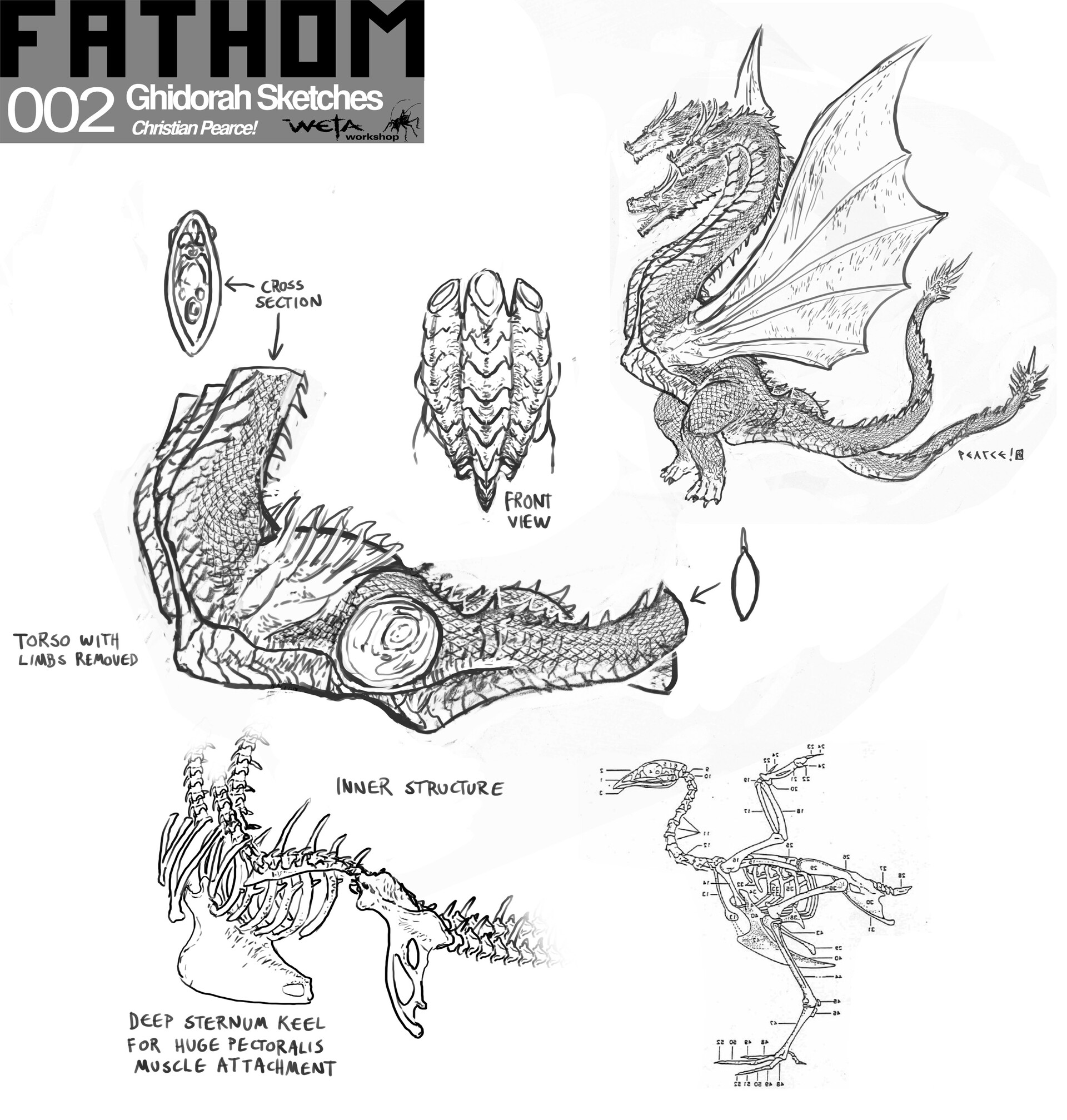 Weta workshop design studio 002 ftm ghidoskel