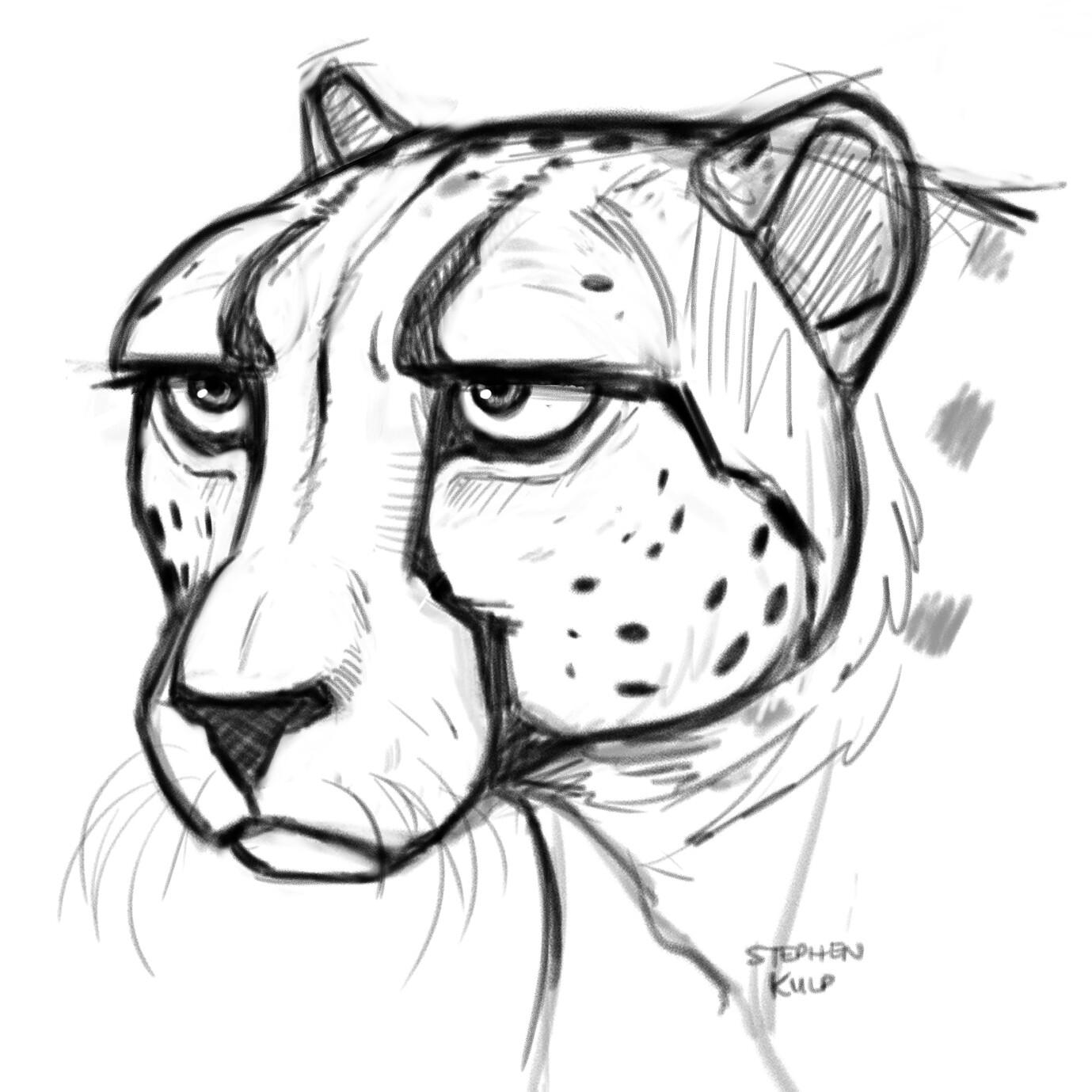 Stephen kulp cheetah sketch 3