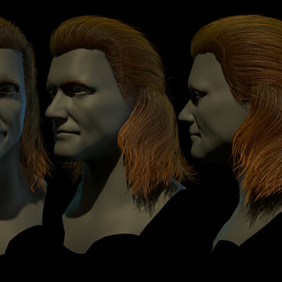 Daniel guzman escobar hairpresentation copy