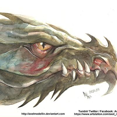Axel medellin 2855 dragon