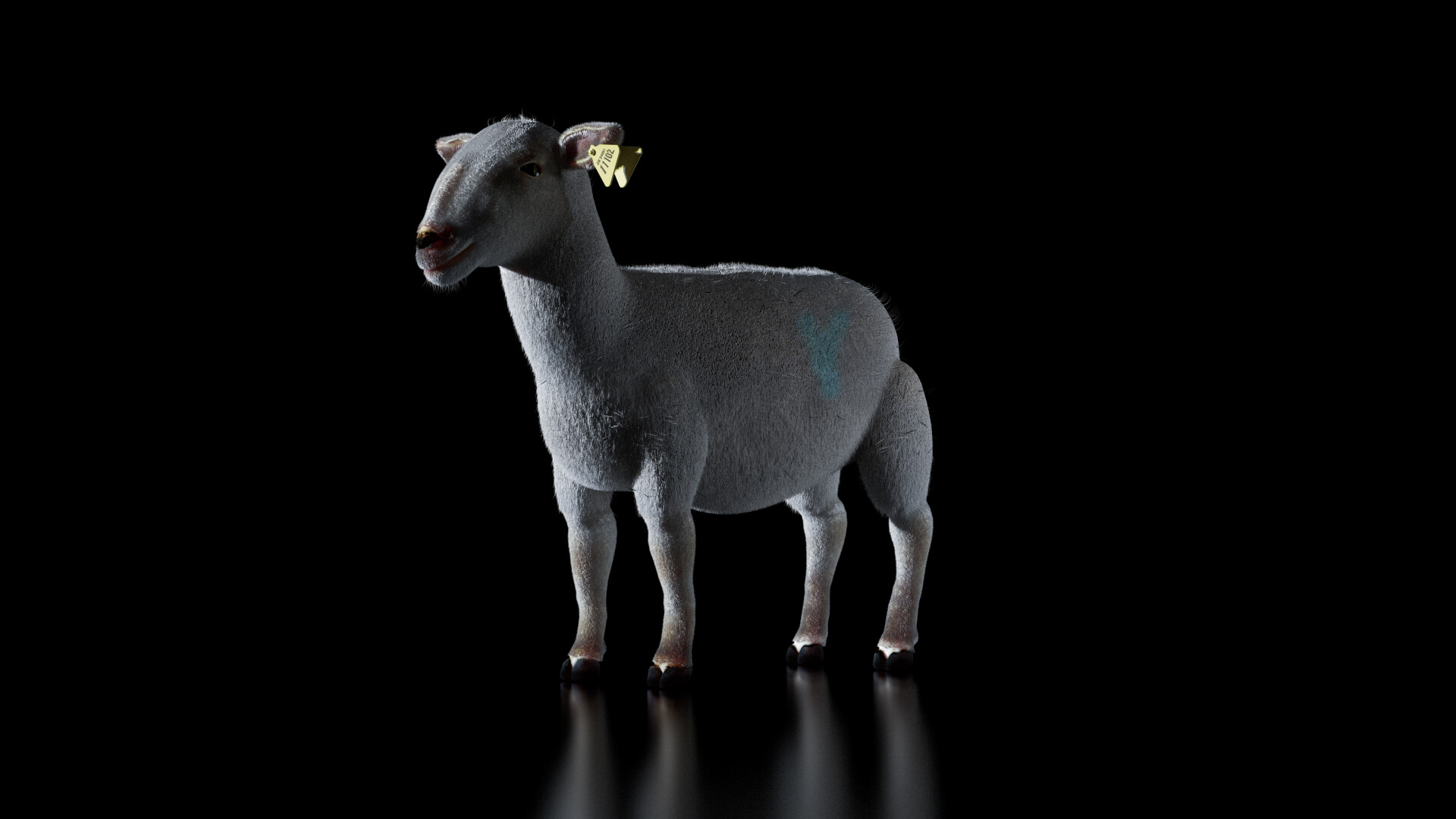 CG Sheep: quick study