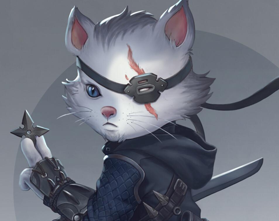 Christian villacis ninjacatp1