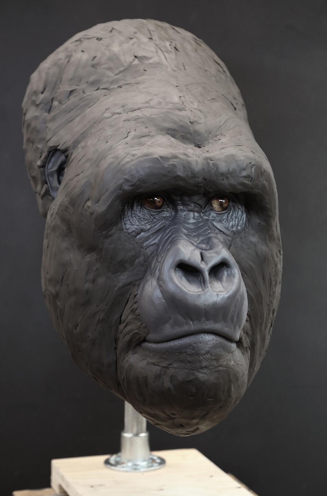 Kurira Head Prototype (wip)