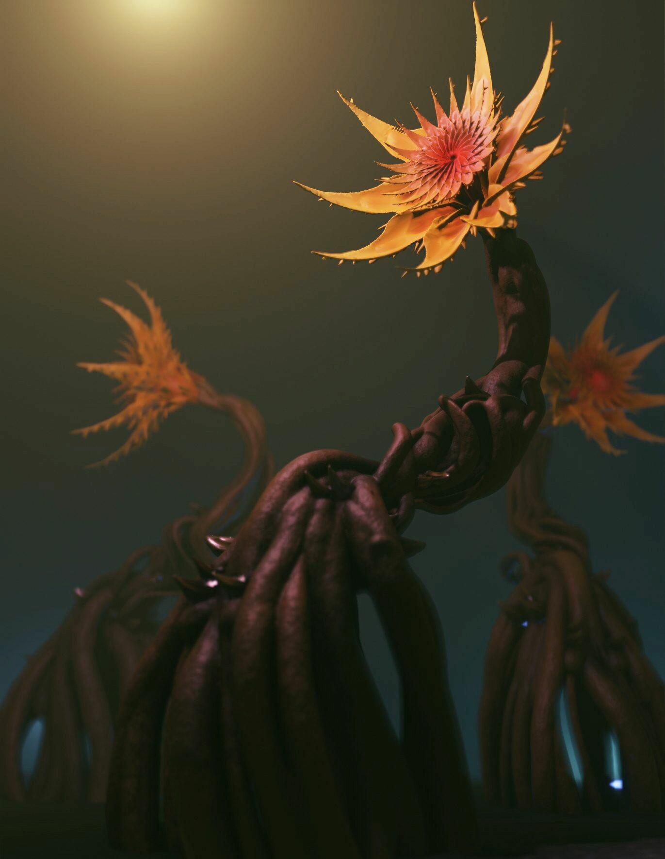 Stijn windig plants