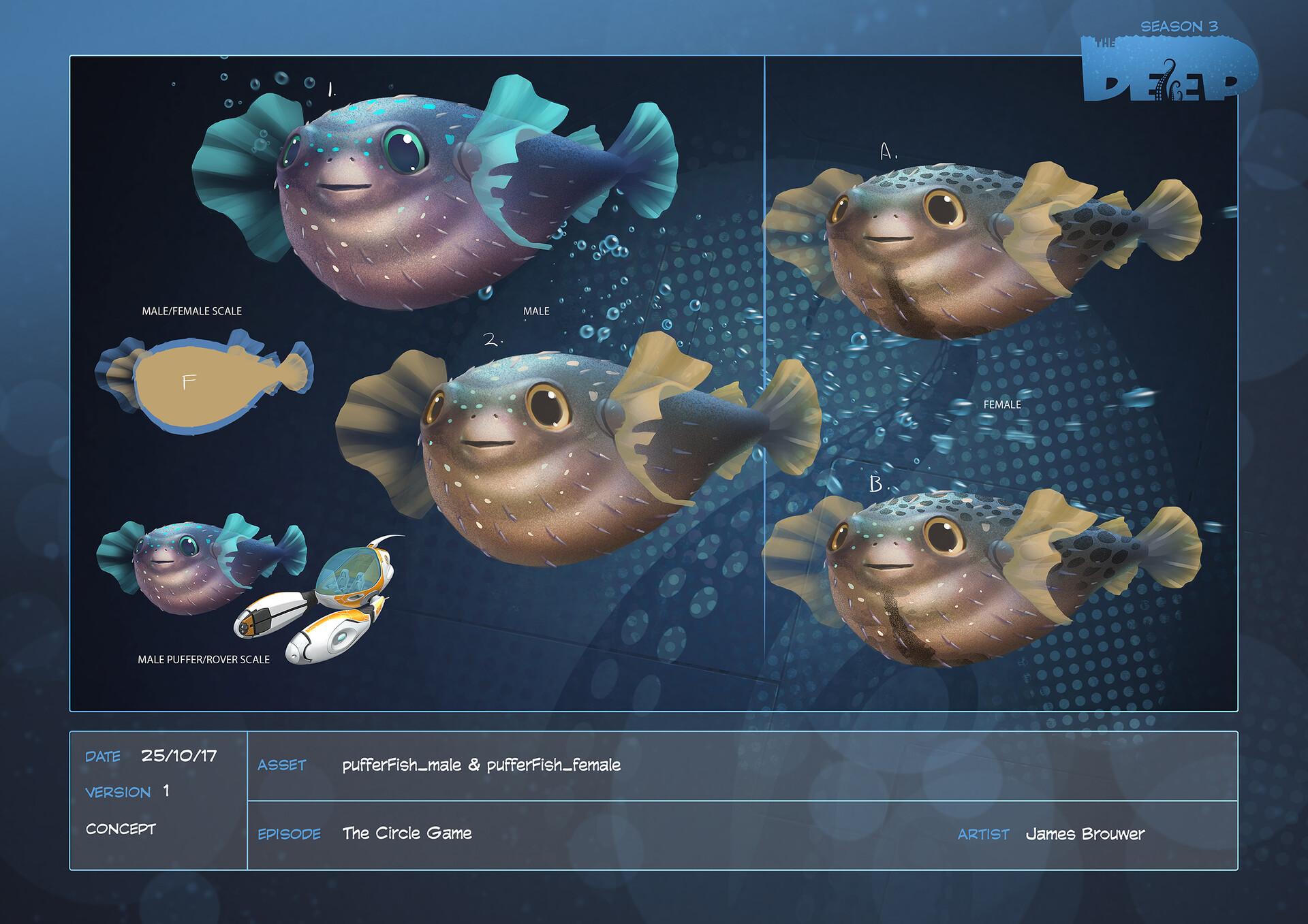 James brouwer pufferfish male pufferfish female design v001