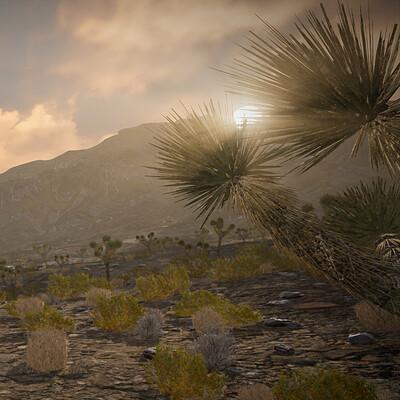 Skye nelson sunset through the yucca