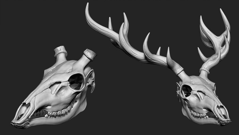 Phase 01 - Sculpting the skull