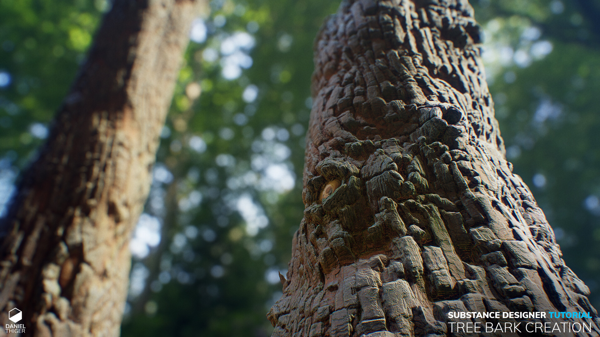 ArtStation - Substance Designer Tree Bark Tutorial, Daniel