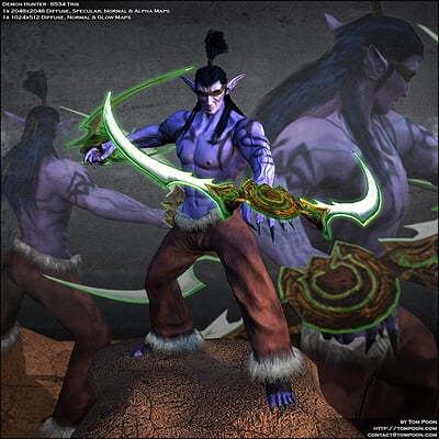 Tom poon demonhunter beauty