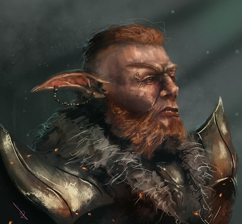 ania-kazmierczak-bearded-elf-general.jpg