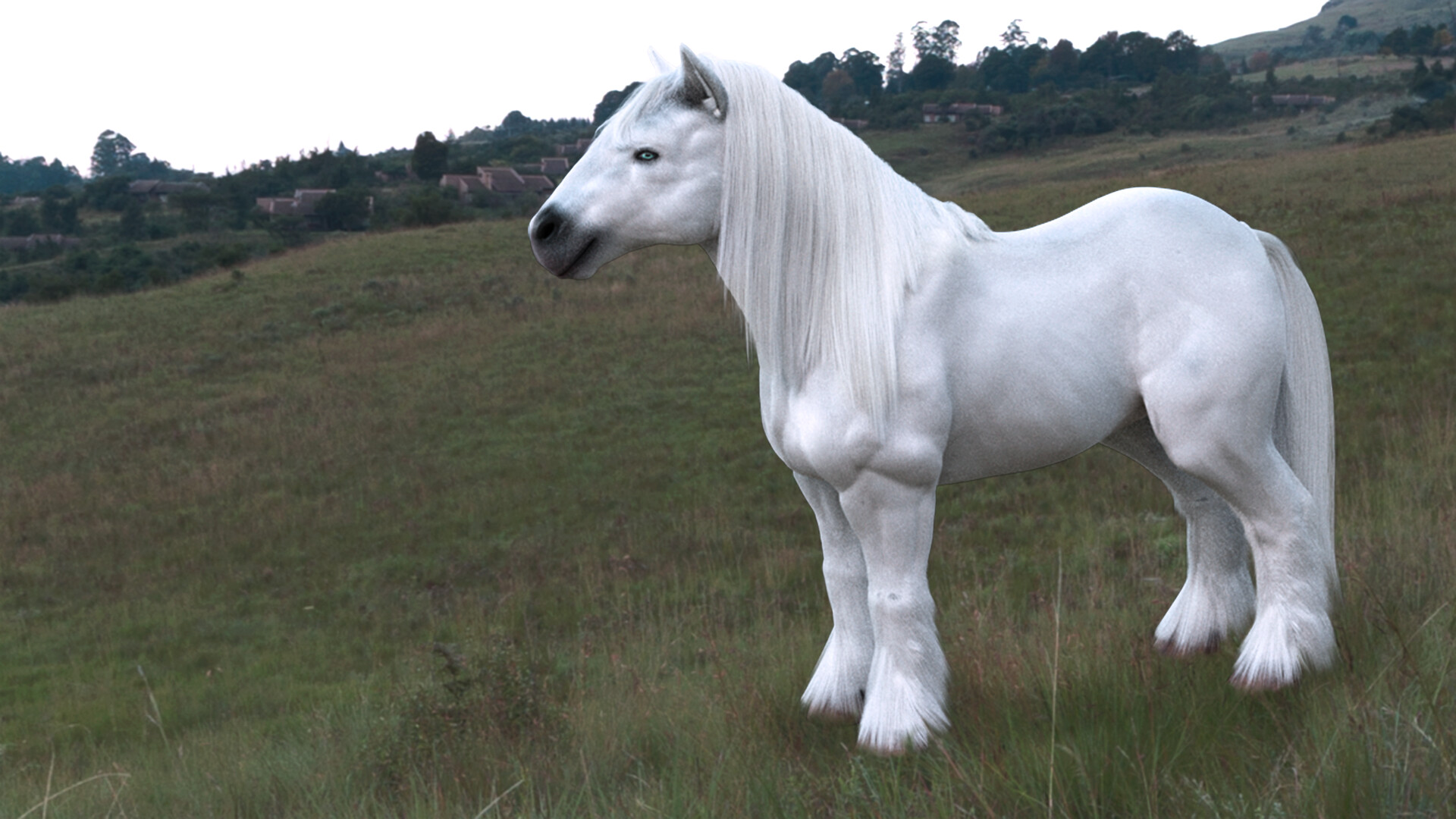 Bill Kellali White Draft Horse