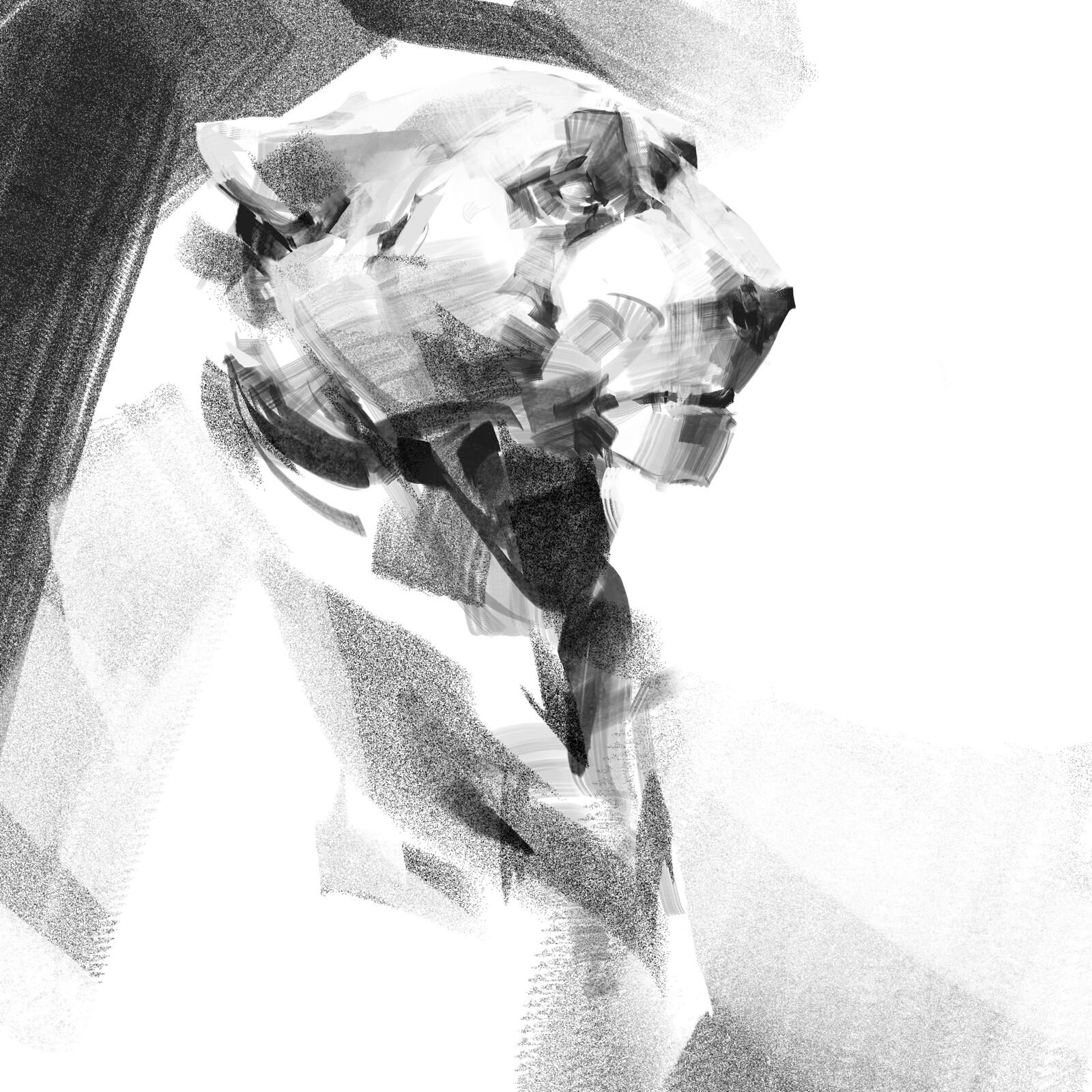 Feline Studies