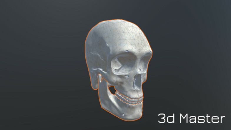 ArtStation - Human Humanoid Skeleton Muscle Skin Veins